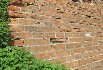 コンニャク煉瓦の擁壁